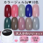フェアリーネイル カラージェル10色セット - 大人かわいい - メール便送料無料