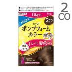 ビゲン ポンプフォームカラー つめかえ用 2CO クールブラウン / 白髪染め ポンプ別売り画像