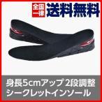 送料無料 シークレットインソール 衝撃吸収 中敷き 靴ケア用品 身長アップ インソール