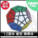 ショッピングパズル パズル 立体 12面体 星型 黒素体250g-20170614-C2196