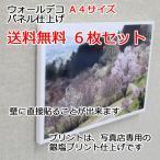 壁アルバム ウォールデコ A4サイズ 6枚セット 送料無料 フォトパネル仕上げ 壁に直接貼れる お客様の写真でつくる 写真プリント 展示用