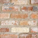 アンティークレンガ  レンガ 壁用 ブリック レトロレンガ ブリックタイル ヴィンテージレンガ 壁用ブリックでDIY(アンテウォール 1309 バラ販売)