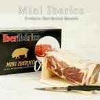 スペイン産 ミニハモンイベリコ 約1kg(ハムホルダー・ナイフ付き)[冷蔵]【送料無料】【3〜4営業日以内に出荷】