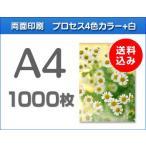 A4クリアファイル印刷 1000枚
