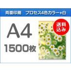 A4クリアファイル印刷 1500枚
