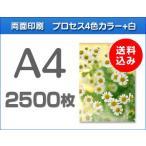 A4クリアファイル印刷 2500枚