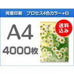 A4クリアファイル印刷 4000枚