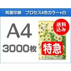 A4クリアファイル印刷【特急便】3000枚