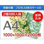 A4クリアファイル印刷 1000枚+1000枚=2000枚