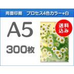 A5クリアファイル印刷 300枚