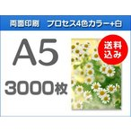 A5クリアファイル印刷 3000枚