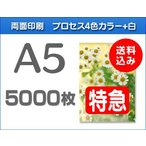 A5クリアファイル印刷【特急便】5000枚
