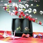 ショッピングお中元 【エコファーマー】伊勢特上煎茶・熱湯玉露(かぶせ茶)100g×2黒缶入詰合せギフト【お中元/お歳暮/年賀/香典返し/産地直送/お取り寄せ】