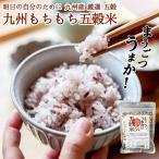 九州産五穀米「まうごつうまか 九州もちもち五穀米」毎日食べて健康生活 / 200g