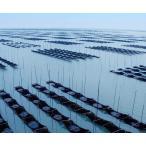 佐賀海苔 一等級佐賀県有明海産焼のり 全形8枚×10袋