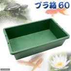 簡易梱包 プラ箱60 緑 (W82×D51×H21cm 約60L) 関東当日便
