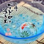浮き玉 小 金魚 関東当日便