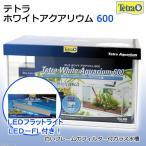 テトラ 期間限定特別セット ホワイトアクアリウム600+LEDフラットライトLED−FL お一人様1点限り 関東当日便