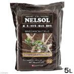 水で練って固まる土 ネルソル 5L 多肉植物 壁掛 枕木 流木 関東当日便