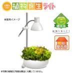 GENTOS 植物育生ライト 太陽光LED 観葉植物 水草 小型水槽 LED テラリウム 関東当日便