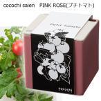 ハイポニカ 心知菜園 cocochi saien Pink Rose ミニトマト 水耕栽培キット 家庭菜園 キッチン菜園 関東当日便
