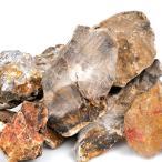 形状お任せ 木化石 サイズミックス 5kg 関東当日便--3800