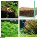 水草とシュリンプの土 こげ茶 3.3kg 約3リットル ノーマルタイプ
