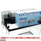GEX グランデカスタム600 60cm水槽用上部フィルター ジェックス 関東当日便