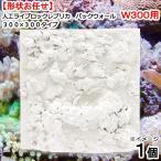 人工ライブロックレプリカ バックウォール W300用 300×300タイプ(1個)(形状お任せ) 関東当日便