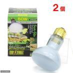 昼用集光型 サングロー バスキング スポットランプ 50W (緑) お買得2個 爬虫類 保温球 関東当日便