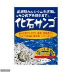 化石サンゴ 1kg(ネット入) 関東当日便