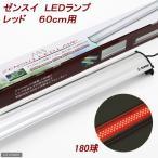 アウトレット品 ゼンスイ LEDランプ レッド 60cm用  水槽用照明 ライト 熱帯魚 海水魚 訳あり 関東当日便