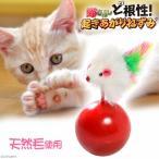 マルカン ど根性起き上がりねずみ 猫 猫用おもちゃ おきあがりこぼし 関東当日便