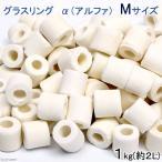 高品質ろ過材 グラスリング α(アルファ) Mサイズ 1Kg(約2L) リング状ろ材 バクテリア 関東当日便
