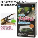 マルカン はじめてのかんたん昆虫標本セット 昆虫標本 昆虫採集 自由研究 関東当日便