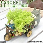 ジブリプランターカバー となりのトトロ トトロと森の三輪車 関東当日便