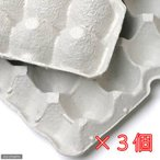 紙製卵トレー 45×29cm 3個セット 昆虫 コオロギ 飼育 ハウス ケース 関東当日便