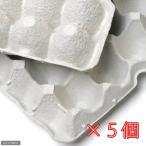 紙製卵トレー 45×29cm 5個セット 昆虫 コオロギ 飼育 ハウス ケース 関東当日便
