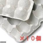 紙製卵トレー 45×29cm 10個セット 昆虫 コオロギ 飼育 ハウス ケース 関東当日便