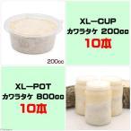 菌糸ビン XL-POT カワラタケ 800cc 10本 + XL-CUP カワラタケ 200cc 10個 関東当日便