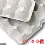 紙製卵トレー 45×29cm 100個セット 昆虫 コオロギ 飼育 ハウス ケース 関東当日便