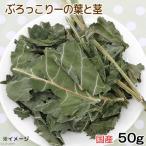 平成28年産 国産 ぶろっこりーの葉と茎 50g 小動物のおやつ 無添加 無着色 関東当日便