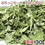 平成28年産 国産 ぶろっこりーの葉のみじん切り 30g 小動物のおやつ 無添加 無着色 関東当日便