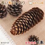 長野県産 長い松ぼっくり 1個 小動物のおもちゃ パインコーン 国産 無添加 無着色 関東当日便