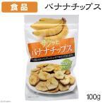 食品 サクッとバナナチップス 100g 関東当日便