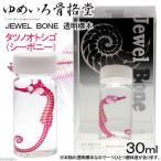 ゆめいろ骨格堂 JEWEL BONE 透明標本 30ml タツノオトシゴ(シーポニー) 透明標本 関東当日便