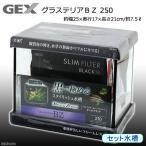 お一人様5点限り GEX グラステリアBZ 250 関東当日便