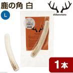鹿の角 白 Lサイズ 長さ14〜18cm以下 1本 中型犬 大型犬 サンドブラスト加工 おもちゃ デンタルケア 関東当日便