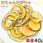 国産 坊ちゃんかぼちゃ 40g USAYAMA 小動物用のおやつ