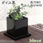 ダイス M 黒(穴有り・受け皿付)(W9.5×D9.5×H10.5cm) 関東当日便